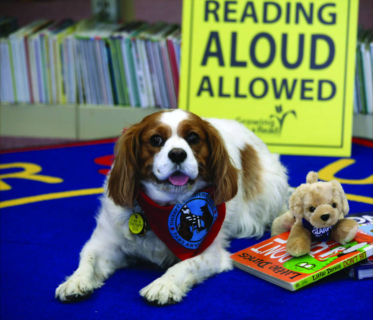 reading dogs