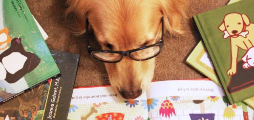 Therapy reading dog- ruffing it